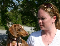 Maddie a brown and red dapple dachshund from Rock Hill, SC with human companion Cortnee Rushlow