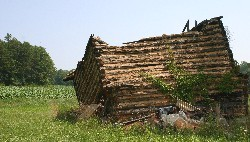 Crumbling tobacco barn in Surry County, NC