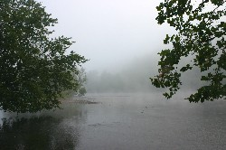 Morning fog shrouds the New River