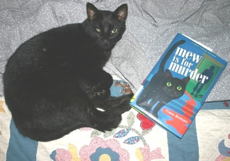 Q-Kitty, crime-solver extraordinaire