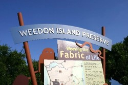 The Weedon Island Preserve in Pinellas County sits just off a busy highway on the way to Tampa