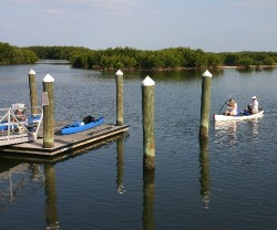 The Weedon Island Preserve offers two paddling trails