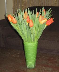 200902_21_tulips