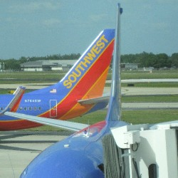 Southwest airplanes at Tampa International Airport