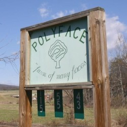 Polyface is located in Swoope, VA nearby Staunton