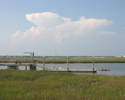 View across the marsh from the bench