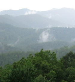 Steam rises from the woods, seen from the Cherohala Skyway on North Carolina side of the Skyway