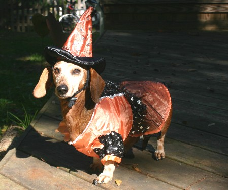 Sabrina the Good Witch