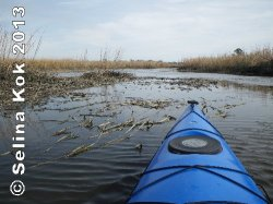 Kayaking up Heron Creek along the Ashley River gives visitors a different perspective on the history of  Middleton Place