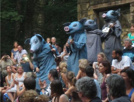 Pigs walk through the audience to join the animal orchestra