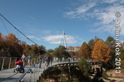 Greenville's award-winning Liberty Bridge